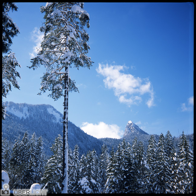 Agfa Click II, alpine winter landscape in Germany on slide film 6x6